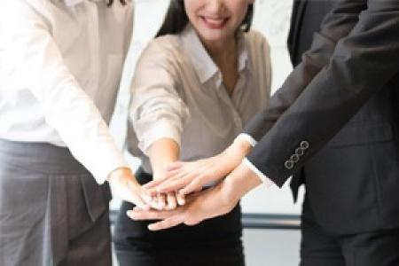 企业管理培训/顾问